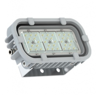 Светодиодный светильник FWL 31-21-850-C120